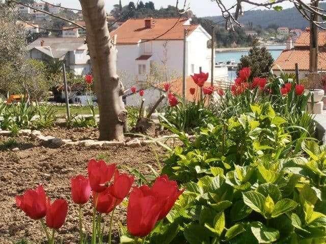 1_mediterranean+holiday+homes
