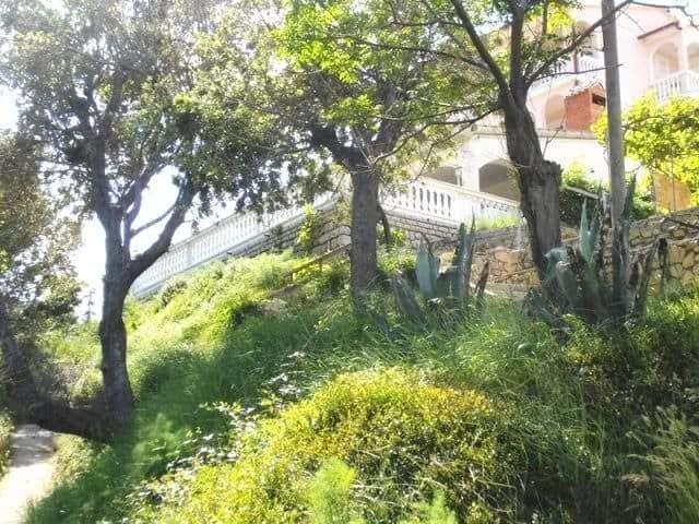 adriatic+islands+apartments+for+rent